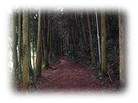 壺阪寺参道