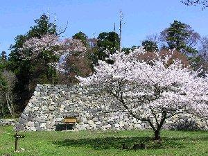 春の高取城