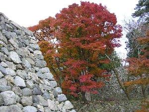 秋の高取城